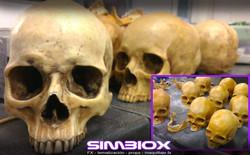 simbiox Props