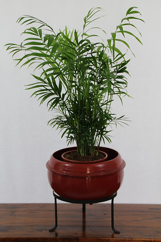 Asian Plant Pot with Stand