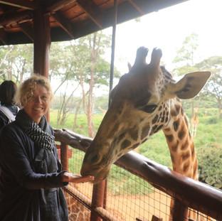 Visit the Giraffe Center in Nairobi
