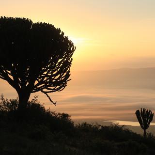 Uitzicht vanaf de rand van de Ngorongoro krater