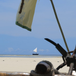 op de dhow boot ga je naar mooie witte zandbanken