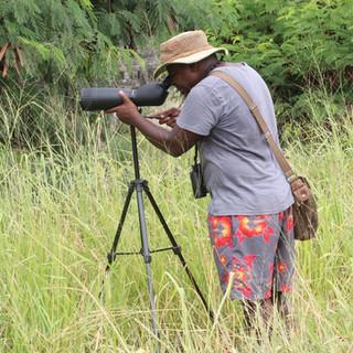 de lokale vogelgids op zoek naar verschillende soorten vogels