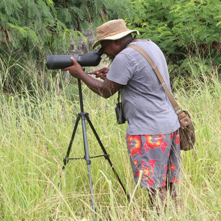 guide looking for birds