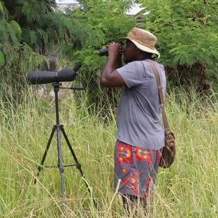bird walk on zanzibar