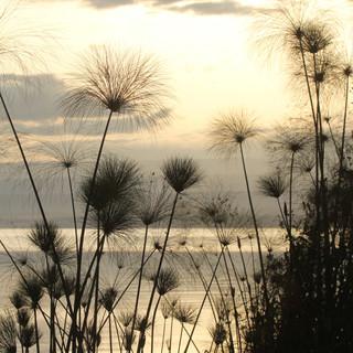 Beautiful sunset at Lake Victoria