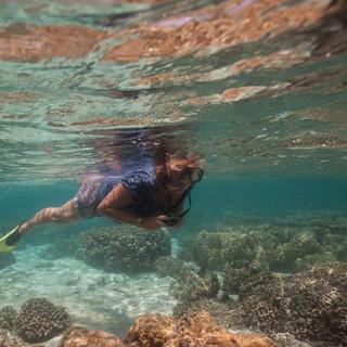 Mooi koraal zie je tijdens het snorkelen bij Zanzibar