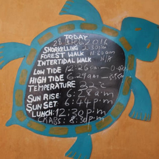 daily schedule at Chumbe Island