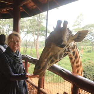 bezoek aan Giraffe Center