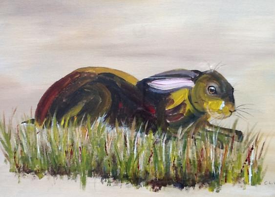 Resting Hare - Chris Woodhead