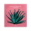 Thumbnail: MOHYUNG - CACTUS ON THE CACTUS