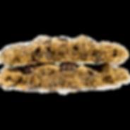 Espresso Bean Cookie