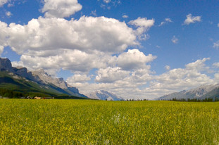 Canmore Glory