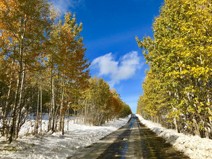 October Snow on the Back Road