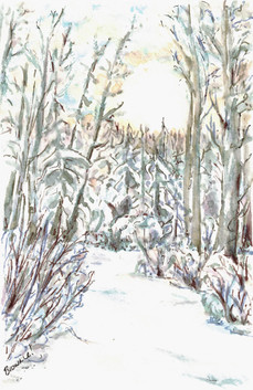 The Frozen Snow-Covered Creek: Item # - A3