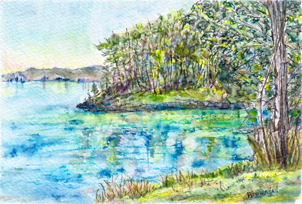 A Secluded Spot on Salt Spring Island, B.C.