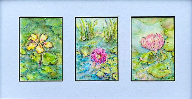 Waterlilies and Lotus - A Tiny Trio