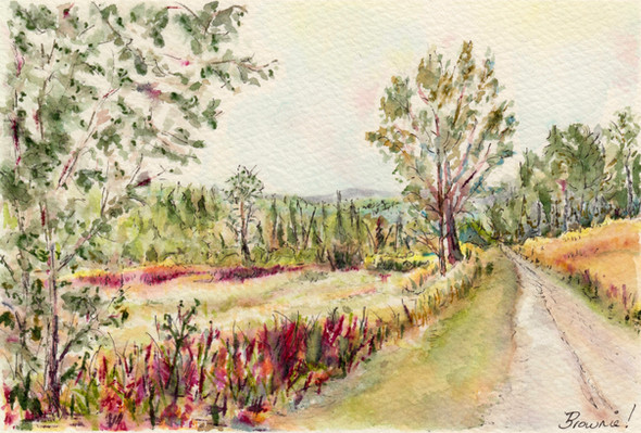 Early Autumn Along Mountain Road: Item # - A20