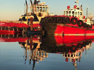 Reflection Perfection in Port McNeill