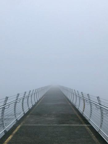 Odgen Point in the Fog, Victoria