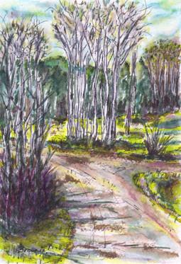 A Stroll Through Saddle and Sirloin