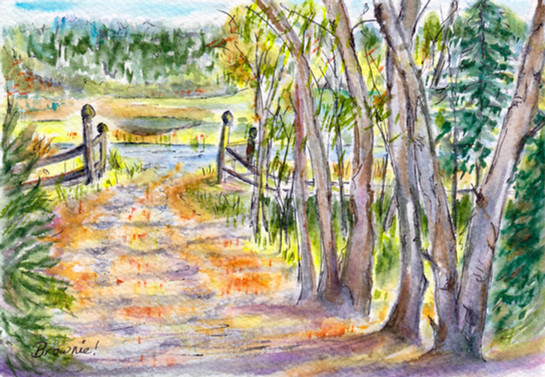 The Driveway in Autumn: Item # - A22