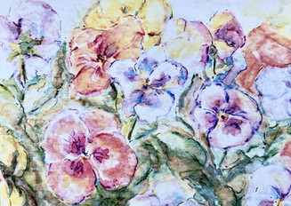 Pining for Pansies: Item # - A14