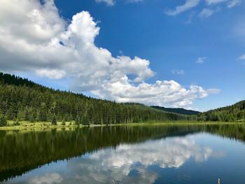 Perfection Up at the Lake