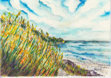Along the Seaside Path in Spring: Item # - A40