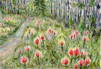 Indian Paintbrush in the Forest: Item # - A9