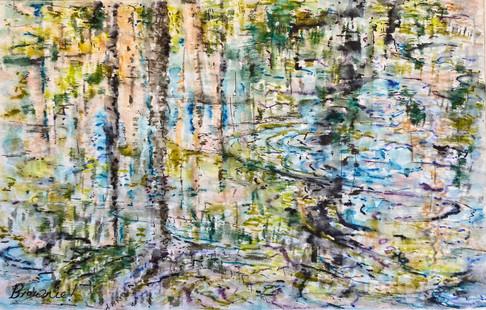 Bragg Creek Reflections