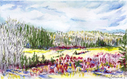 Springtime in the Foothills: Item # - A30