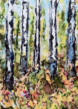 Autumn Aspen 3: Item # - A4