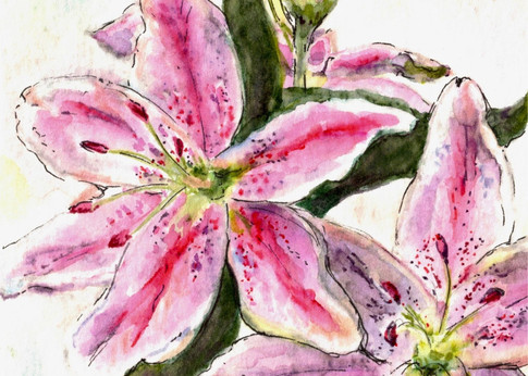 Jane's Lily (detail) : Item # - A18