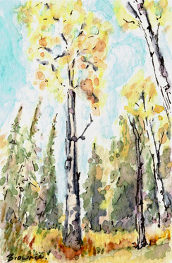 A Tiny Trio -  Autumn Aspen 2