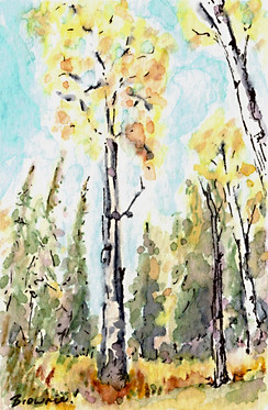 A Tiny Trio -  Autumn Aspen 2