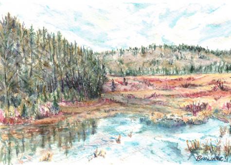 Wetlands in the Valley