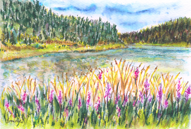 The Lake in Summer: Item # - A55