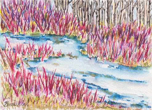 Spring Willow Wetlands: Item # - A32