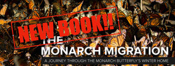 Monarch Book on Amazon