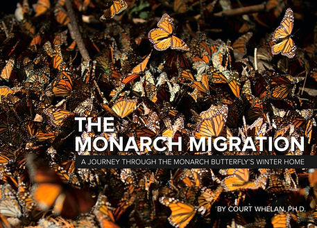 Monarch Book Cover_edited.jpg