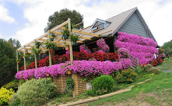 GardensmartMirboo 020.jpg