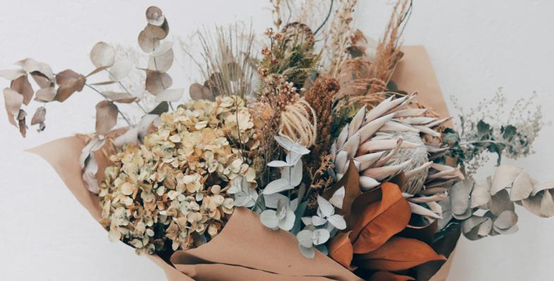 Guia para secar flores e folhas em casa