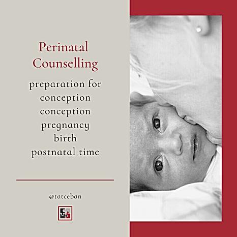 Perinatal Psychological Support | Parenthood4D Counseling. Blenheim, New Zealand.
