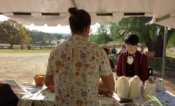 Mushroom Cultivation at the Autumn Harvest Festival @ Rouse Hill House and Farm