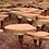 Thumbnail: Premium Reishi Mushroom Extract