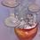 Thumbnail: Shimeji Mushroom Grow Kit