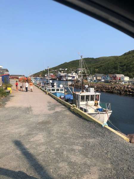 Petty Harbour