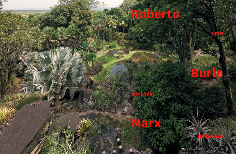 typical built Burle Marx garden