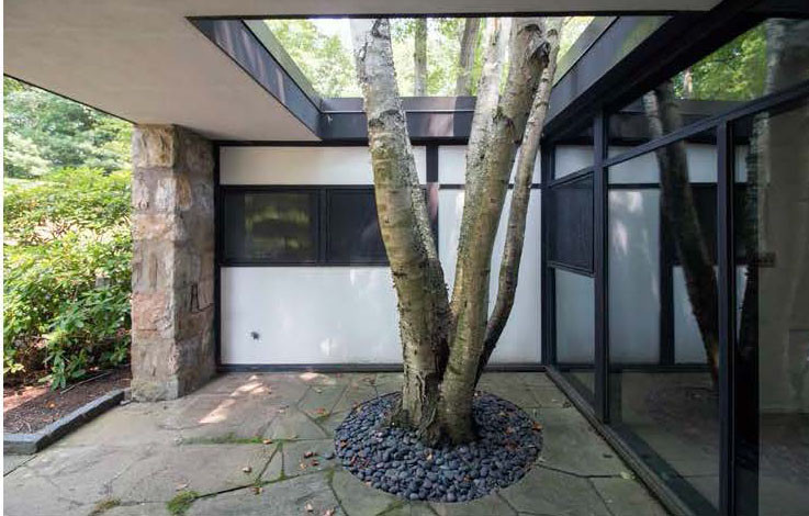 Paul and Marion Rand's renew house