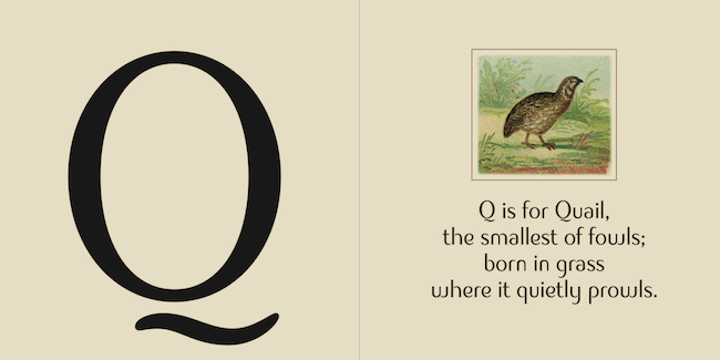 illustrated-alphabet-book3
